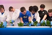 """CCA students participate in a ceremonial """"lettuce cutting"""" at the AgWorks at CCA unveiling."""