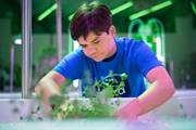 AgWorks at CCA is a new aquaponics facility located at CCA's Capital Campus in Harrisburg that gives students the opportunity to get involved in aquaponics, hydroponics and aeroponics.